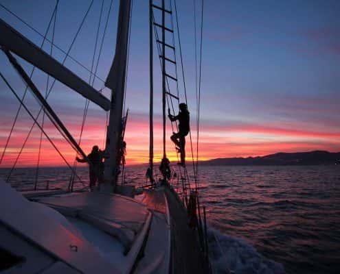 csr-intro-sunset-participants