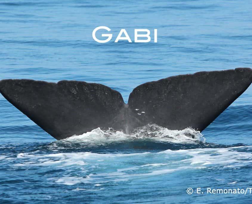 capodoglio Gaby