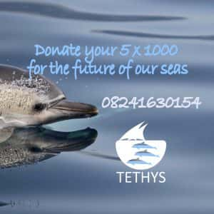 donate 5x1000 to Tethys