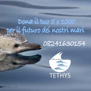 5x1000 a Tethys