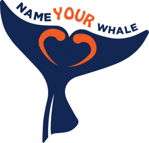 Name Your Whale